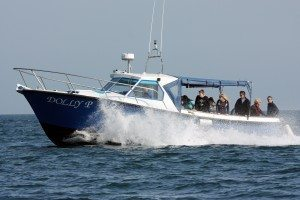 Take a boat ride on the Dolly P with St Ives Boats during your stay with www.carbisbayholidays.co.uk
