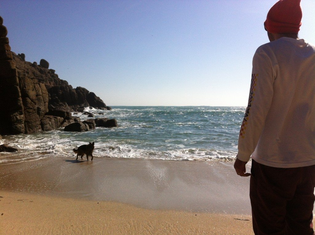Man and his dog playing at one of St Ives Dog Friendly beaches