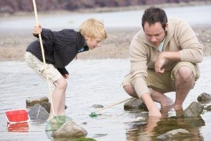 Father and son rockpooling. www.carbisbayholidays.co.uk