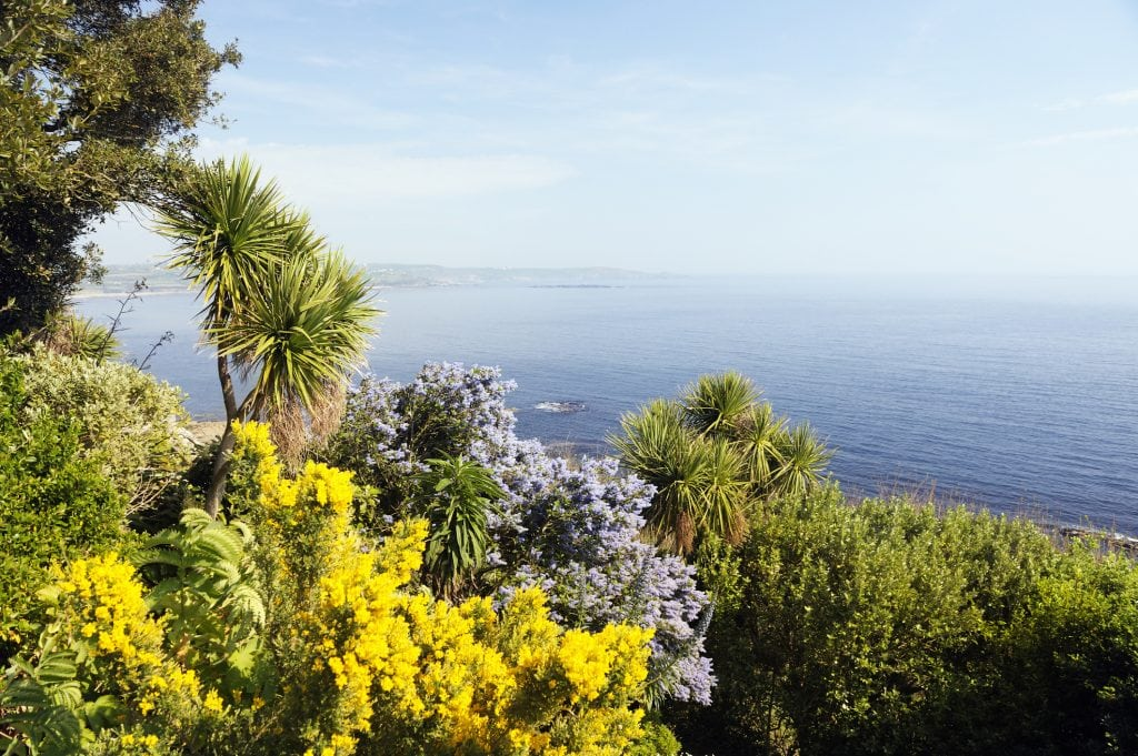 Colorful garden on St. Michaels Mount above the atlantic ocean. Marazion, Cornwall, UK.