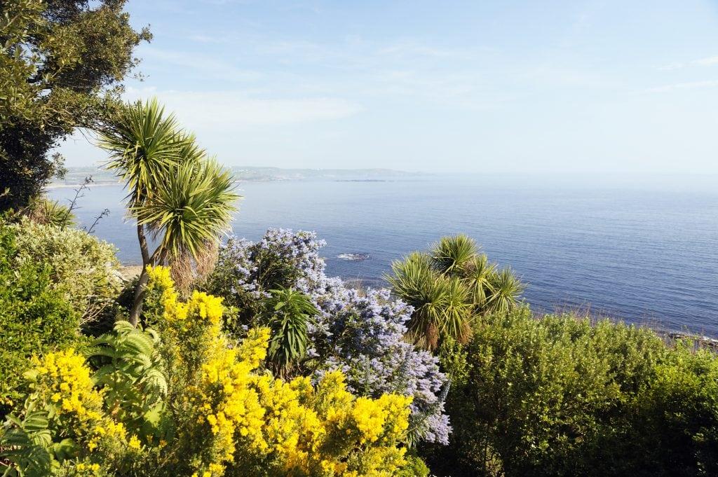Colorful garden on St. Michaels Mount above the atlantic ocean. Marazion, Cornwall, UK.