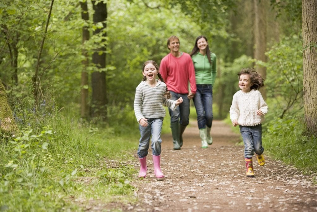 Family-Days-Out-Cornwall-Woodland-Walk