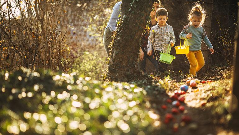 Easter egg hunt in nature