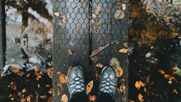 Walks in Cornwall - autumn bridge
