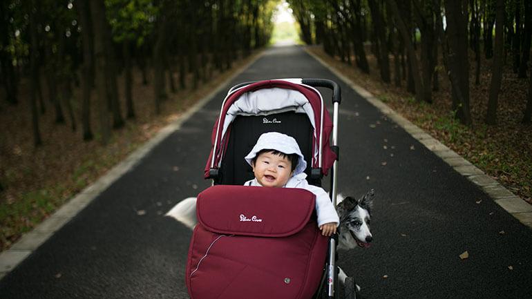 Walks in Cornwall - baby in buggy